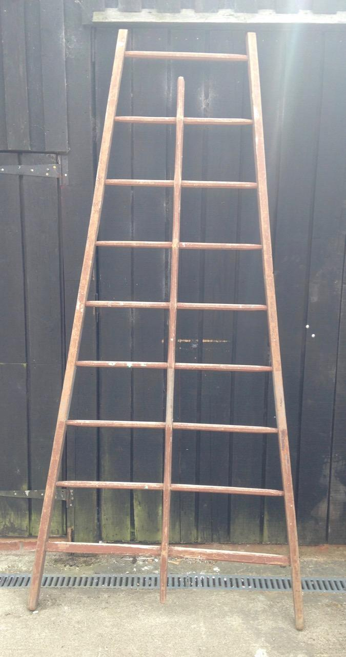 Pair of Apple Ladders