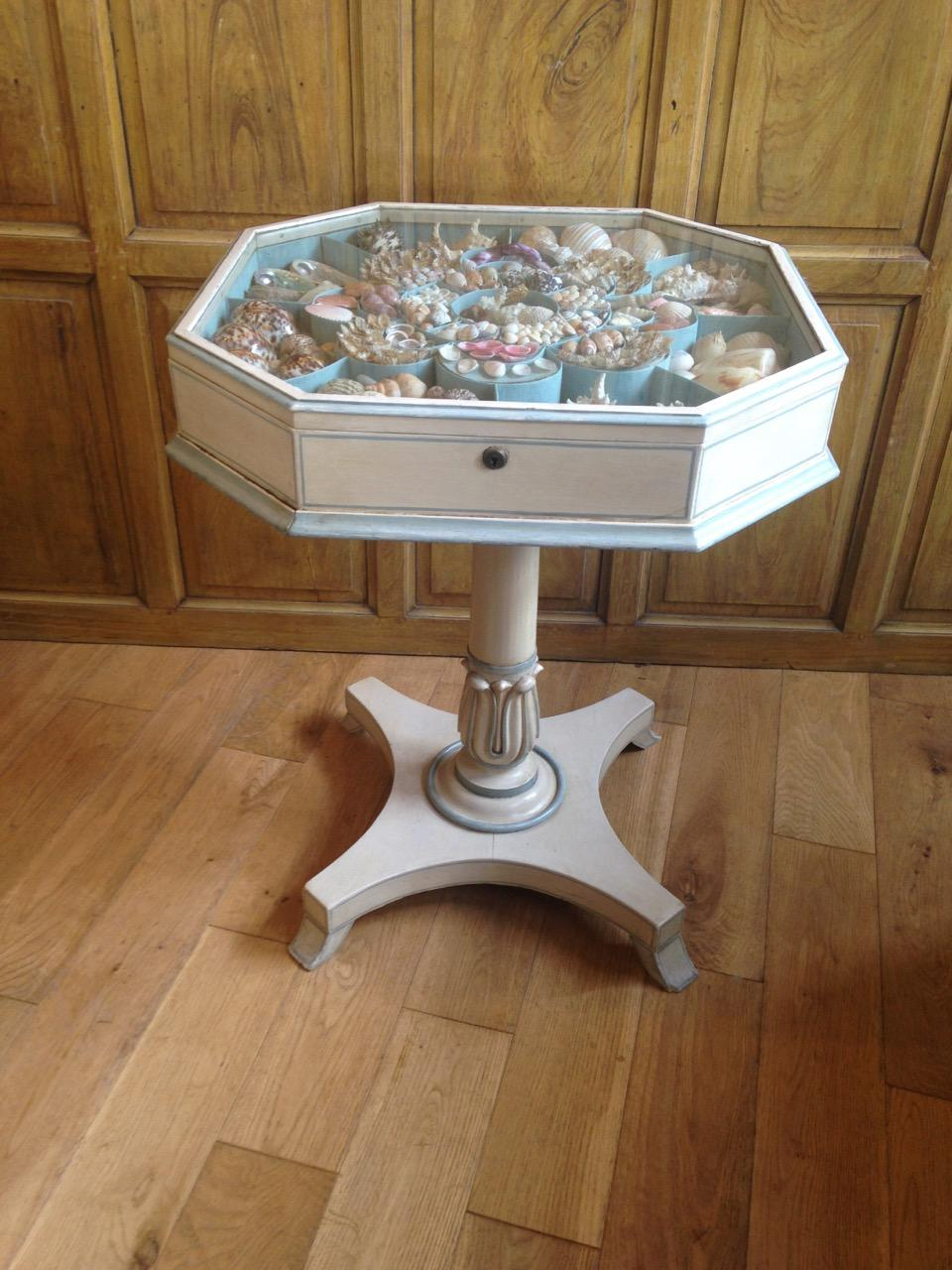 Shell collection Table